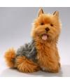 Knuffel hond Australische terrier 35 cm