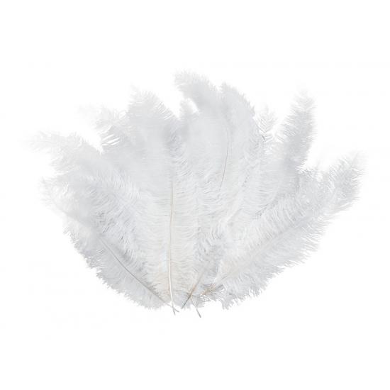 12 grote decoratie veren wit