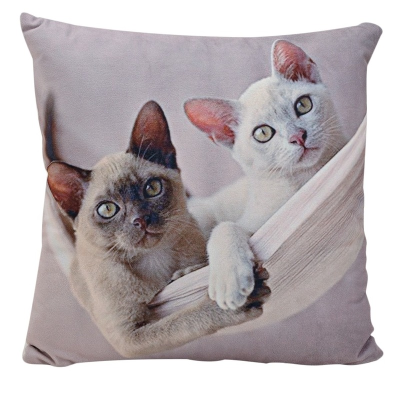 Decoratie kussens Siamese kitten-poes-kats 34 x 34 cm