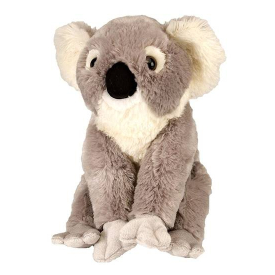 Koala knuffelbeer 30 cm