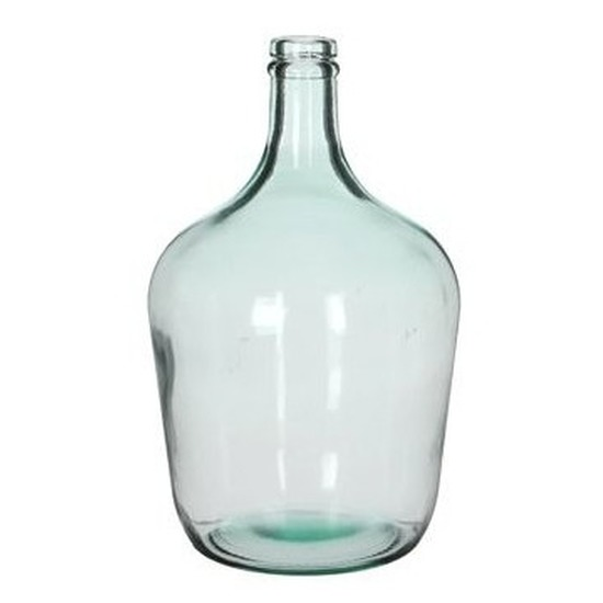Mica flesvormige bloemenvazen-decoratie vazen-boeketvazen 18 x 30 cm transparant glas