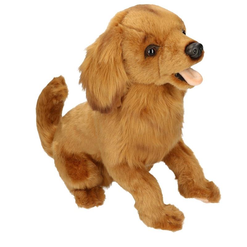 Pluche Golden Retriever hondje knuffeldier hondje 42 cm