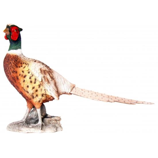 Tuinbeeld fazant 52 cm