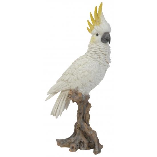 Tuinbeeld witte kaketoe 40 cm