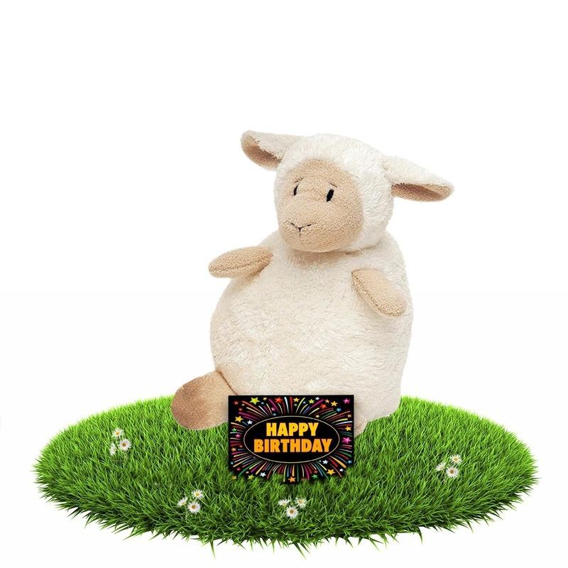 Verjaardagcadeau schapen knuffel beige 16 cm + gratis verjaardagskaart
