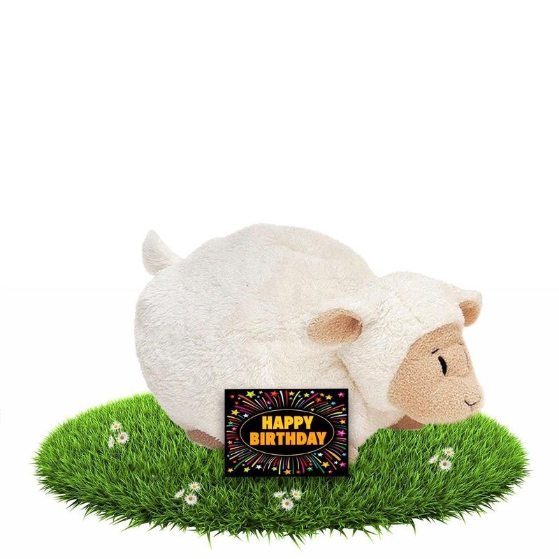 Verjaardagcadeau schapen knuffel beige 26 cm + gratis verjaardagskaart