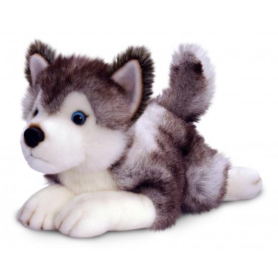 Zachte husky knuffel 50 cm
