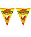 Mexicaans themafeest vlaggenlijn Fiesta