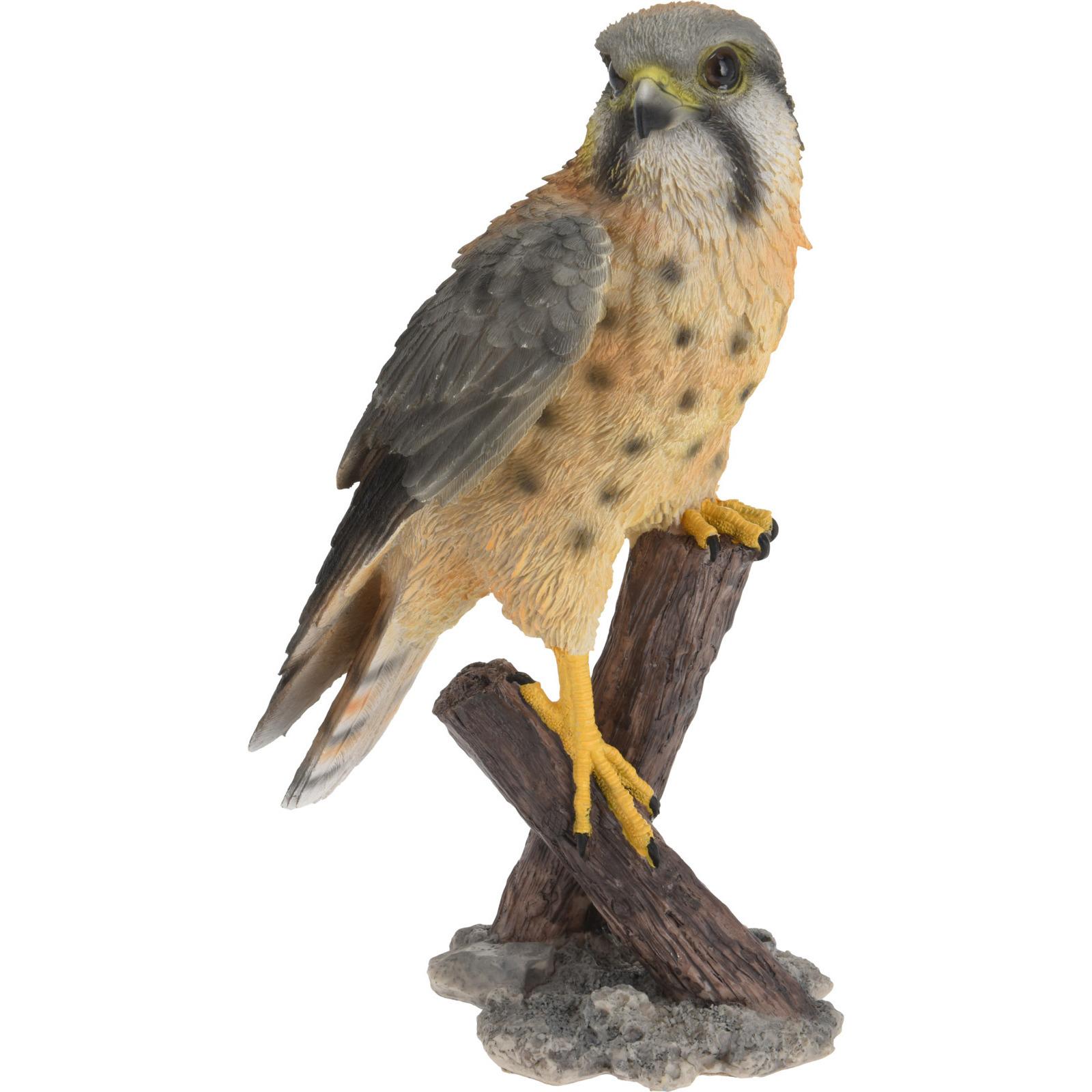Dierenbeeld torenvalk vogel 30 cm woondecoratie